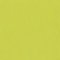 Bazzill Fourz Cardstock 12 X12 -Granny Smith/Grasscloth - 1
