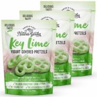 Nature's Garden Key Lime Yogurt Covered Pretzels - 7656-3