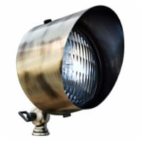 Dabmar Lighting LV30-ABS Solid Brass Directional Flood Light with Hood, Antique Brass