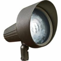 Dabmar Lighting DPR40-HOOD-BZ Cast Aluminum Directional Spot Light with Hood, Bronze