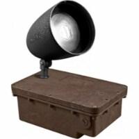 Dabmar Lighting FG-DPR38-B-100MH-MT MT In-Ground Ballast Box with Black Bullet & PAR38 Lamp - 1