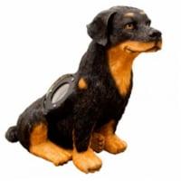 Dabmar Lighting LV-LED-DOG-BW 3W & 12V MR16-LED 3 LEDs Dog Garden Accent Light - Black & Whit - 1