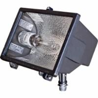 Dabmar Lighting DF6500 6.25 x 9.25 x 6.25 in. 120 V 100 watts Powder Coated Cast Aluminum Min