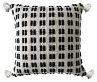 Chicos Home Decorative Throw Pillow - Black/White