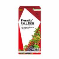 Floradix Iron + Herbs Vegetarian Liquid Herbal Supplement