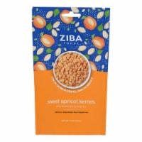 Ziba Foods - Kernals Apricot Roasted Salted - Case of 6-5.3 OZ - 5.3 OZ