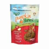 Emerald Pet 856916006465 6 oz Pumpkin Harvest Apple Chewy Dog Treats - 1