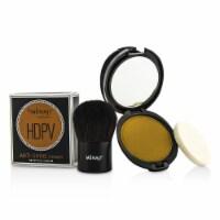 Menaji HDPV AntiShine Sunless Tan Kit: HDPV AntiShine Powder  T (Tan) 10g + Deluxe Kabuki Bru - 2pcs