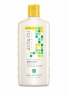 Andalou Naturals Sunflower And Citrus Brilliant Shine Shampoo