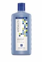 Andalou Naturals Argan Stem Cell Age Defying Treatment Shampoo