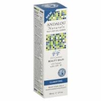 Andalou Naturals Oil Control Beauty Balm