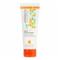 Andalou Naturals Argan Oil Plus Deep Conditioner