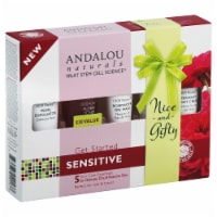 Andalou Naturals 1000 Roses Skin Care Essentials Kit