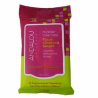 Andalou Naturals Micellar One Step Sensitive  Facial Cleansing Swipes
