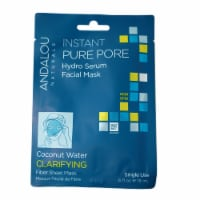 Andalou Naturals Coconut Water Clarifying Instant Pure Pore Facial Mask