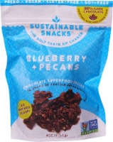 Sustainable Snacks  Chocolate Superfood Snacks    Blueberry and Pecans