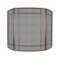 Pleasant Hearth Asteria Fireplace Screen - Brown