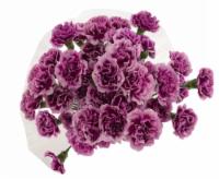 Mini Carnations Bouquet