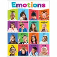 Colorful Emotions Chart, 17  x 22 - 1