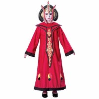 Rubies Costumes 274366 Star Wars Queen Amidala Child Costume, Large - 1