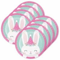 Birthday Express 305343 1st Birthday Bunny Plates 7 Dessert Plates - 24 Piece