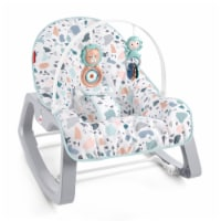 Fisher Price GKH64 Infant to Toddler Portable Baby Seat Rocker, Pacific Pebble - 1 Unit