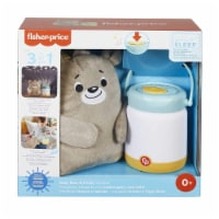 Fisher Price Baby Bear And Firefly Soother Set