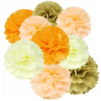 Wrapables Set of 12 Tissue Pom Pom Party Decorations, Peach/Orange/Tan/Ivory - 12 pieces