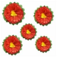 Wrapables Set of 5 Tissue Flower Pom Poms Party Decorations, Melon - 5 pieces