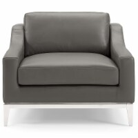 Harness Stainless Steel Base Leather Armchair Gray - 1