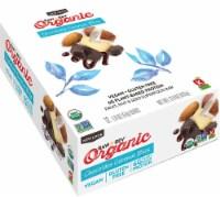 RAW REV  Organic Fruit Nut Seed Bar   Chocolate Coconut Cashew