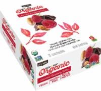RAW REV  Organic Fruit Nut Seed Bar   Chocolate Raspberry Truffle