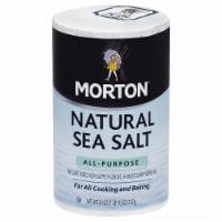 Morton All-Purpose Natural Sea Salt 26 Oz Pour Spout (Pack of 12) - 12