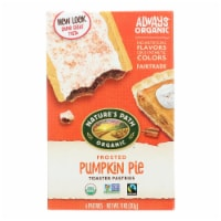 Nature's Path Toaster Pastry - Organic - Pumpkin - Case of 12 - 11 oz - 11 OZ