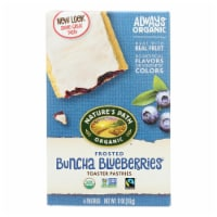 Nature's Path Organic Frosted Toaster Pastries - Buncha Blueberries - Case of 12 - 11 oz. - Case of 12 - 11 OZ each