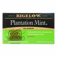 Bigelow Tea - Tea Perfectly Mint - Case of 6-20 BAG