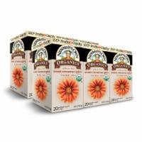 Newman's Own Organics Sweet Cinnamon Herbal Tea 20ct - 6 Pack