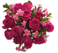Exquisite Pink Rose Bouquet (Approximate delivery is 1-3 Days)