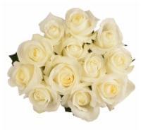 Passion Growers Dozen Fresh Cut White Roses (Approximate Delivery is 1-3 Days)