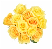 Passion Growers Dozen Fresh Cut Yellow Roses (Approximate Delivery is 1-3 Days)