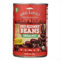 Dunya Harvest - Red Kidney Beans Can - Case of 12 - 15 OZ - Case of 12 - 15 OZ each