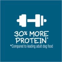 Puppy Chow Healthy Start Nutrition Complete with Real Chicken High Protein Dry Puppy Food