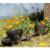 BIA Cordon Bleu Serene Mug Set - Black Perspective: top
