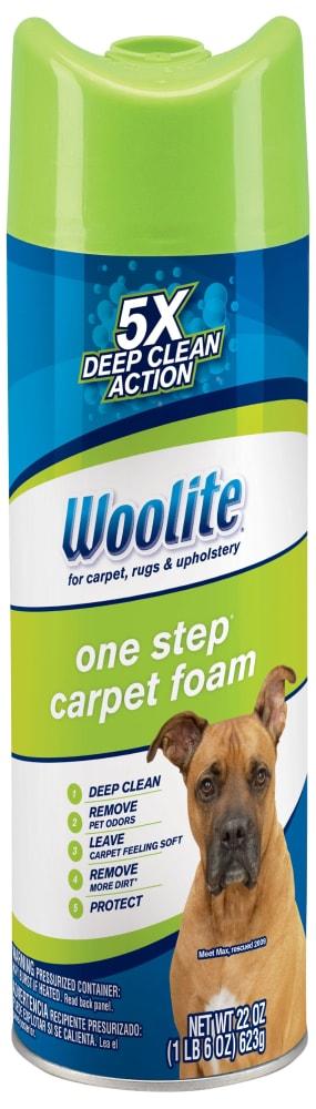 Kroger Woolite Heavy Traffic Carpet Foam Cleaner 22 Fl Oz